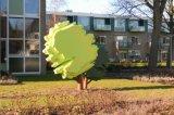 image bomen-in-tuin-jpg